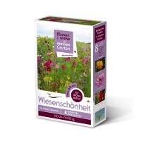 Blumensamen, Wiesenschönheit, hochwüchsig 100m² - 300m²