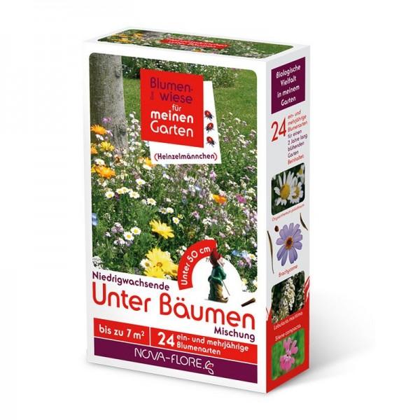 Blumensamen, Heinzelmännchen, unter Bäumen 7m²