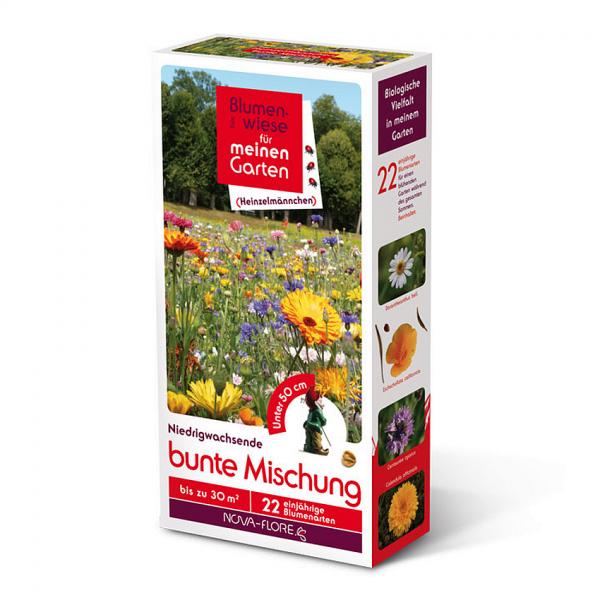 Blumensamen, Heinzelmännchen, bunte Mischung 30m²