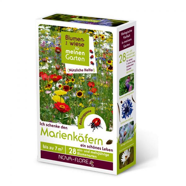 Blumensamen, nützliche Helfer, Marienkäfer 7m²