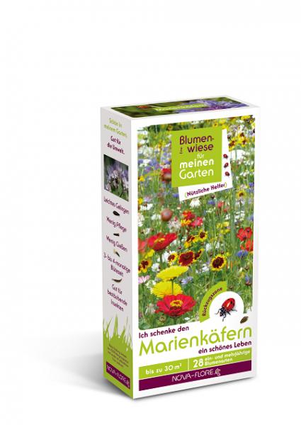 Blumensamen, 30m², nützliche Helfer, Marienkäfer