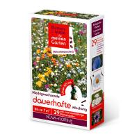 Blumensamen, Heinzelmännchen, dauerhafte Mischung 7m²